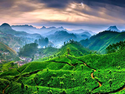 4-day-munnar-tour-package