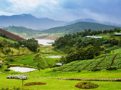 Mysore Ooty Package